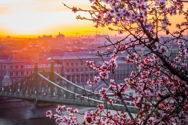 Budapest, Hungary - romantic travel destination   Lewis Marquees