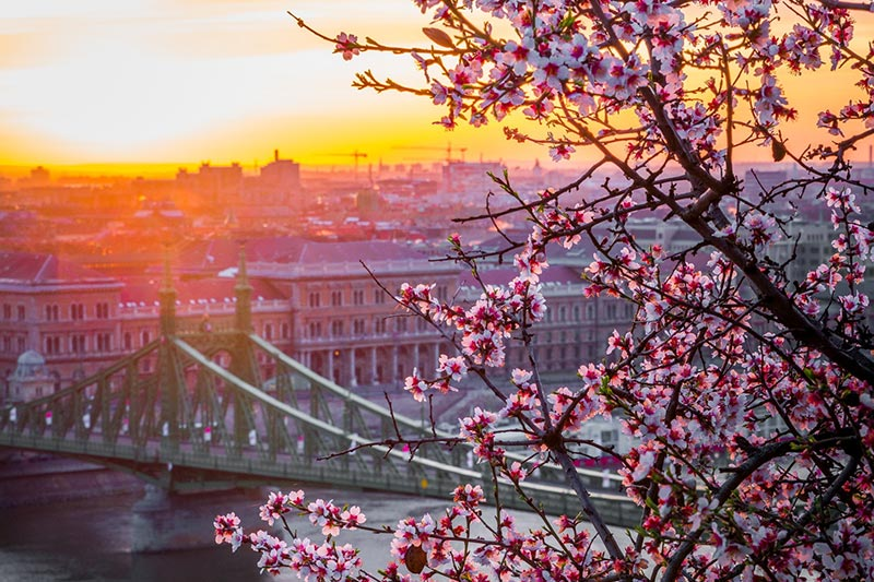 Budapest, Hungary - romantic travel destination | Lewis Marquees
